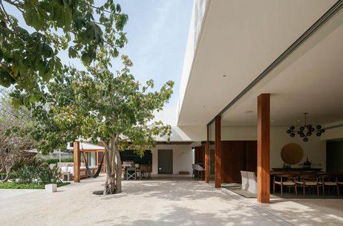 casa TM in Messico - vista esterna della casa con vetrate e soggiorno