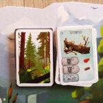 carte giocate nella plancia selva